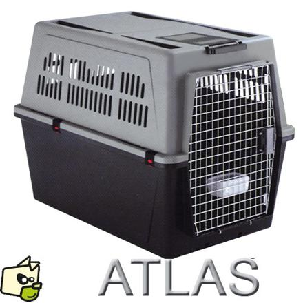 cage de transport pour chien moyen