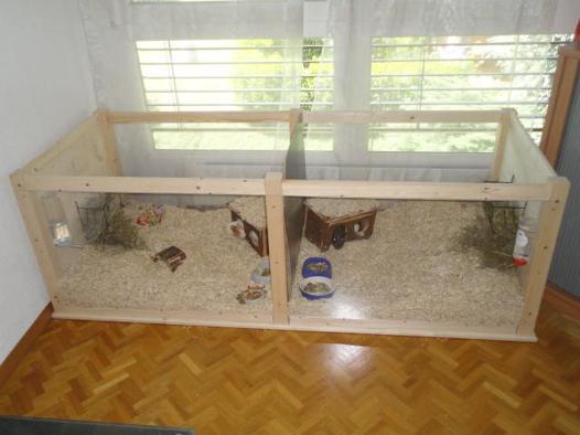 cage pour cochon d\'inde fait maison