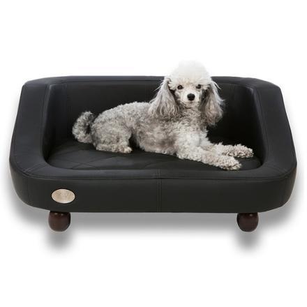 canapé pour petit chien pas cher