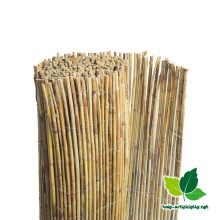 canisse en bambou entier