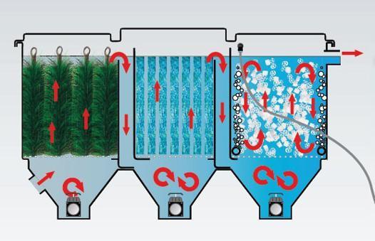 filtre pour bassin poisson