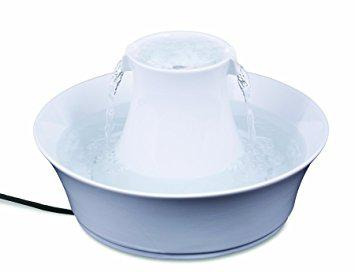 fontaine eau chat