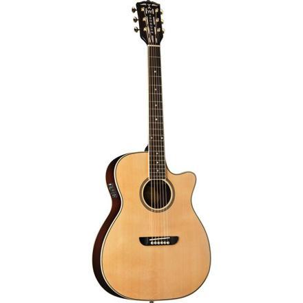 guitare electro accoustic