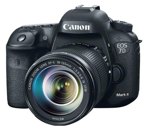 appareil photo reflex amateur