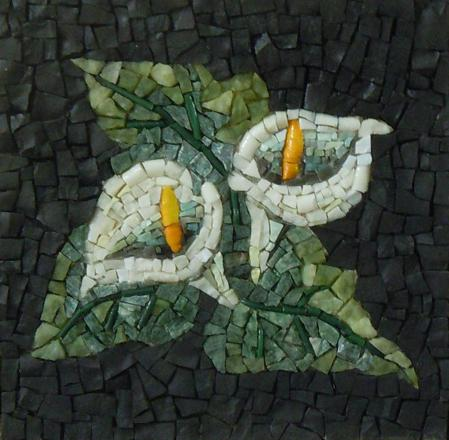 arum mosaic