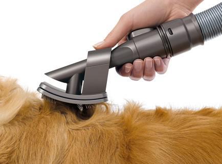 aspirateur poil de chien