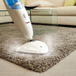 balai vapeur tapis
