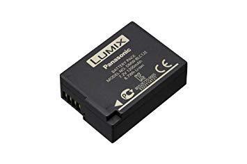batterie pour lumix fz200