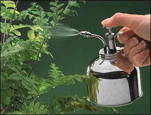 brumisateur pour plantes d'intérieur