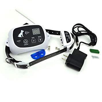 cloture electrique sans fil pour chien
