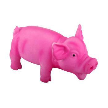cochon latex