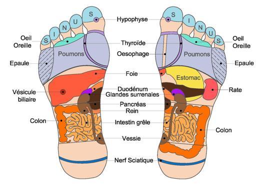 comment masser les pieds