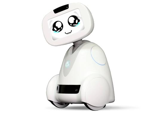 companion robot