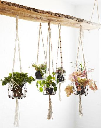 crochet plante suspendu