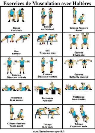 exercice avec haltère
