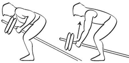 exercice dos barre