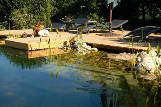 kit piscine naturelle