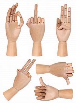 modèle main