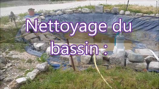 nettoyage bassin poisson rouge
