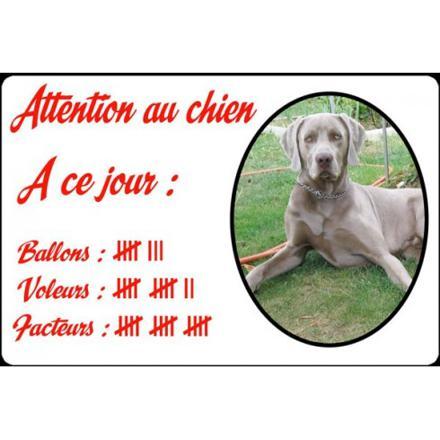 plaque chien personnalisée