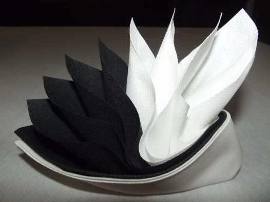 pliage de serviette en papier 2 couleurs