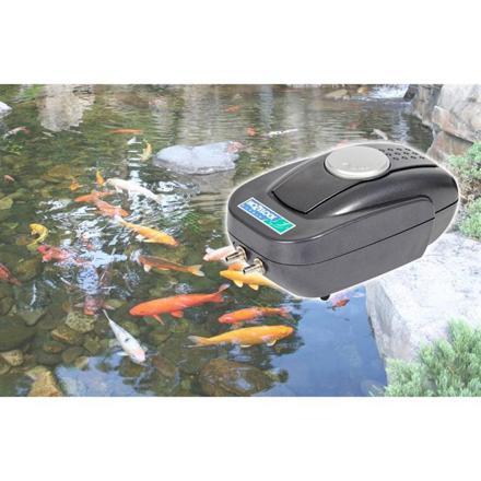 pompe pour bassin a poisson exterieur solaire