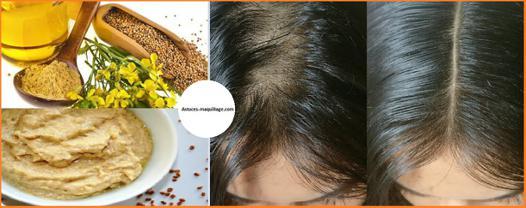 poudre de fenugrec cheveux