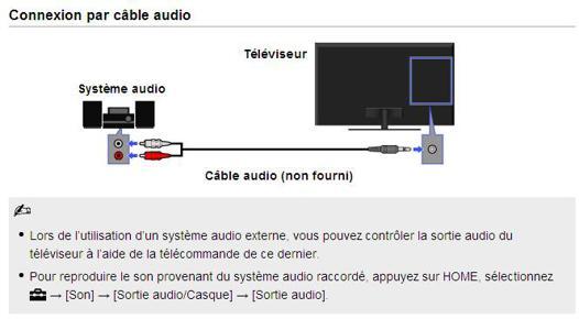prise audio rca