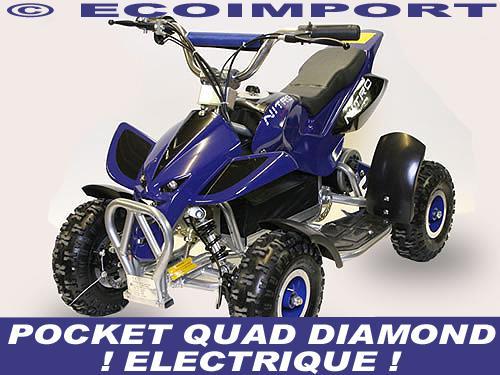 quade electrique 12v