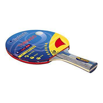 raquette de ping pong 6 étoiles