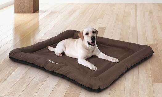 tapis pour chien xxl