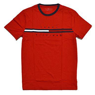 tee shirt hilfiger homme