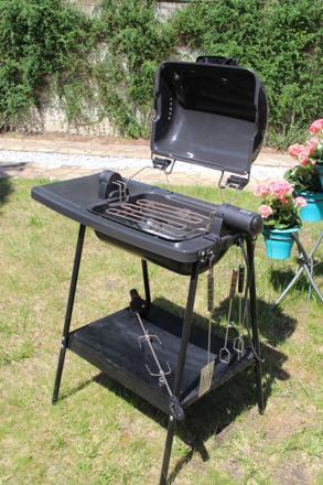 tefal barbecue rotissoire