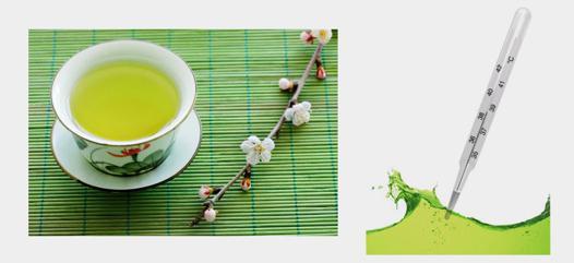 température thé vert