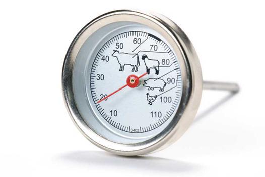 thermometre viande