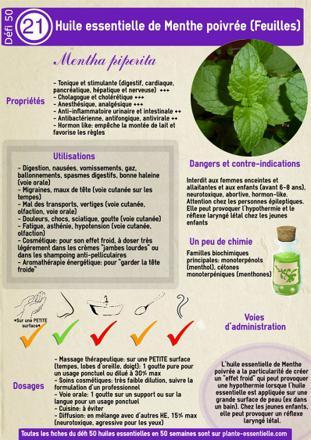 vertu huile essentielle menthe poivrée